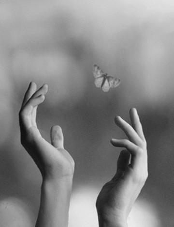 black-and-white-butterfly-fly-hands-Favim_com-897548